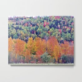 Paint By Nature - Fall Foliage Metal Print