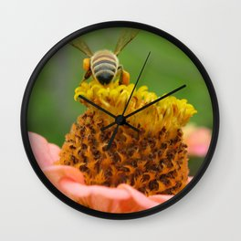 Busy Bee on Zinnia Wall Clock