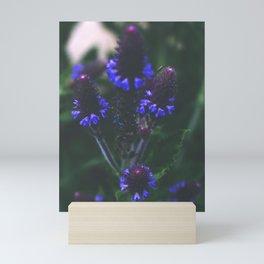"""Climber On Sandia"" Mini Art Print"