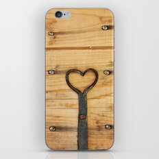 Love is All Around Us iPhone & iPod Skin