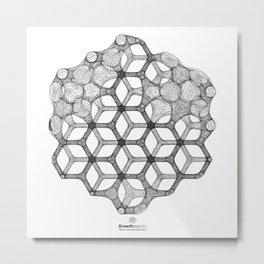GEOMETRIC NATURE: COGNITIVE HEXAGON w/b Metal Print