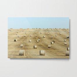 haystacks in a field of straw Metal Print