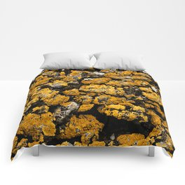 Gold Stone Mold Comforters