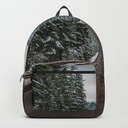 Winter Road Trip - Pacific Northwest Nature Photography Backpack