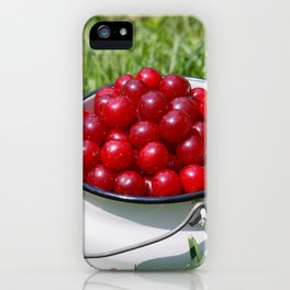 Prunus cerasus sour cherry fruits iPhone Case