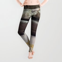 Coral on wooden carving and antique bowl Leggings