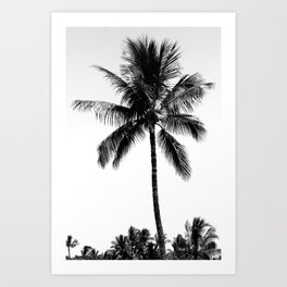 Palm Tree Noir #11 Art Print