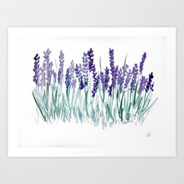 Larkspurs Art Print