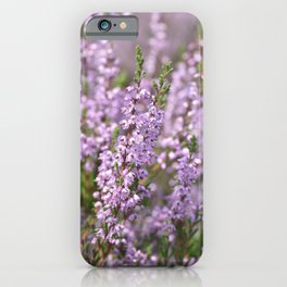 Fall heather -- Pastel pink flowers on heath in The Netherlands -- iPhone Case