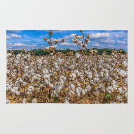 Sea of Cotton Rug