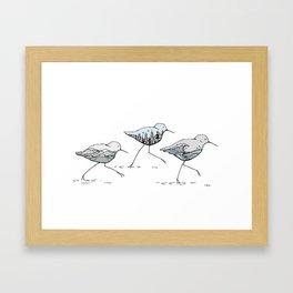 """"""" Shorebirds """" Framed Art Print"""