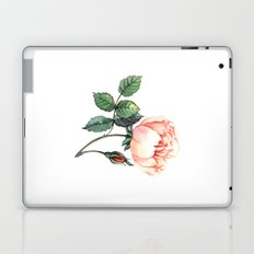 Illustration with watercolor rose Laptop & iPad Skin