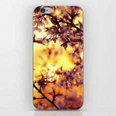 Dancing in the light iPhone & iPod Skin