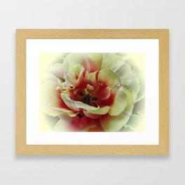 Blending with the Tulip Framed Art Print