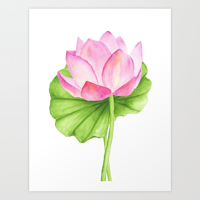 Lotus Flower Watercolor Drawing Art Print By Liemduy Society6