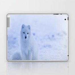 The Arctic Fox in Iceland Laptop & iPad Skin