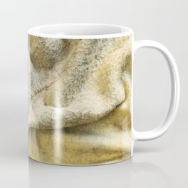 Worn Old Duster Cloth Close Up Coffee Mug