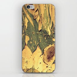 Old Wood 04 iPhone Skin