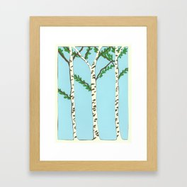 Birch trees Framed Art Print