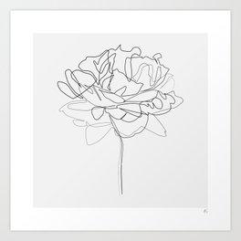 """Botanical Collection"" - Peonies Flower Art Print"