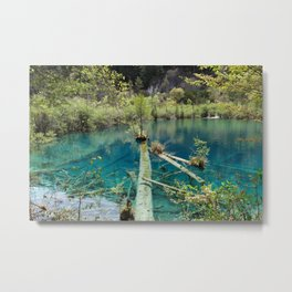 Blue water lake surrounded with greenery Metal Print