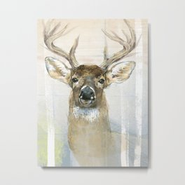 White-tailed Deer Surrounded By Birch Metal Print