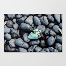 Cracked Egg Canvas Print