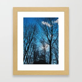 The blue sky and the tall trees Framed Art Print