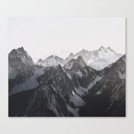Find your Wild Canvas Print
