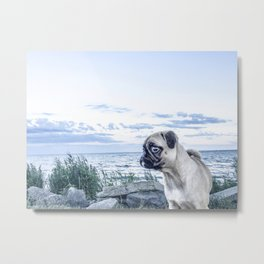 A Pug and a Beach Metal Print