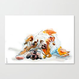 Swiss Bob Canvas Print