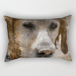 Mysteries of Love Rectangular Pillow