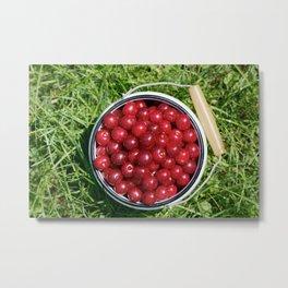 Sour cherrys fruit Metal Print