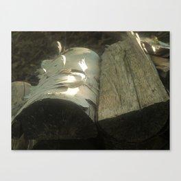Wood logs, soft light Canvas Print