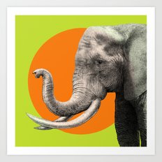 Wild 6 by Eric Fan & Garima Dhawan Art Print