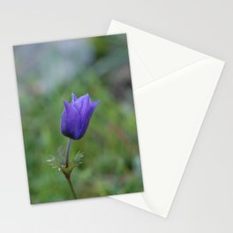 Lone Blue-Purple Anemone Stationery Cards