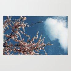 Spring Rug