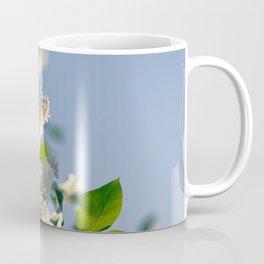 White Syringa vulgaris lilac Coffee Mug