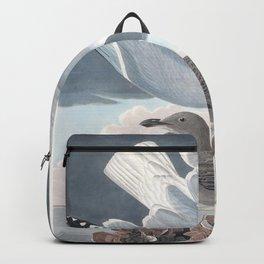 Herring gull edit, Birds of America, Audubon Plate 291 Backpack