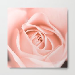 Peach Delight Metal Print