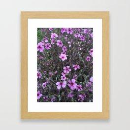 Flower IV Framed Art Print