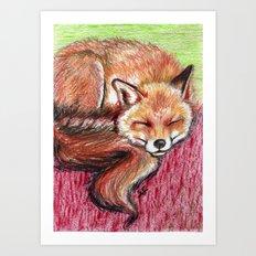 Fox dreaming Art Print