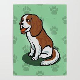 Cute cavalier Poster