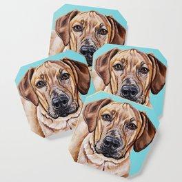 Kovu the Dog's pet portrait Coaster