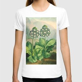 Auriculas : Temple of Flora T-shirt