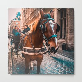 Horse in the City Metal Print