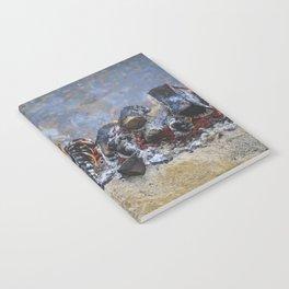 Spartan Fire Notebook