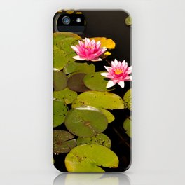Nature in the lake iPhone Case