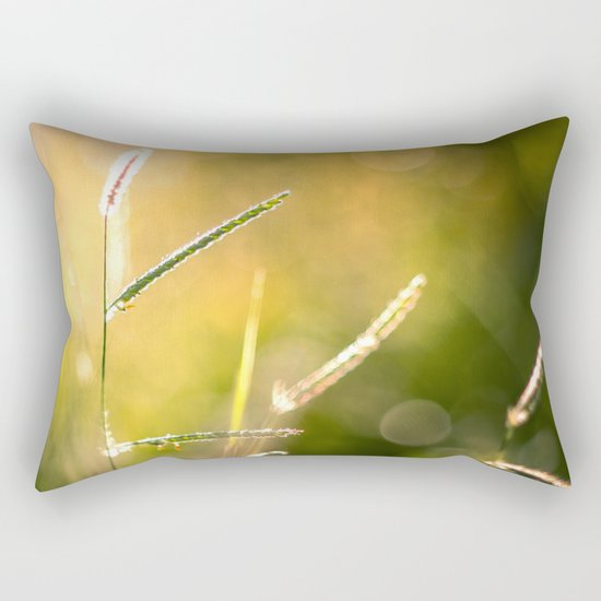 Fragile Rectangular Pillow