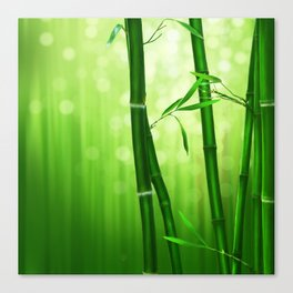 Bamboo Stalks with a Green Bokeh Background Canvas Print